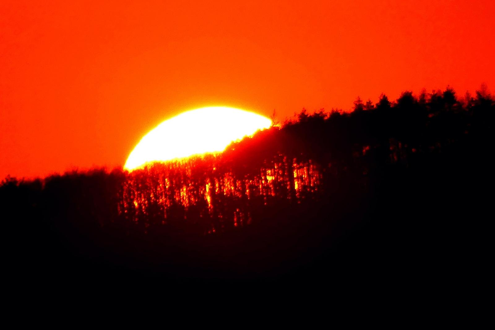 03 Napnyugta az erdő fölött