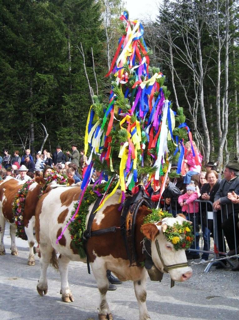Őszi ünnep Tirolban, Stájerországban