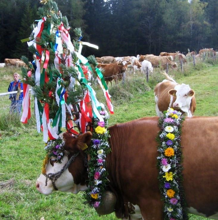 Őszi ünnep Tirolban, Stájerországban 4.