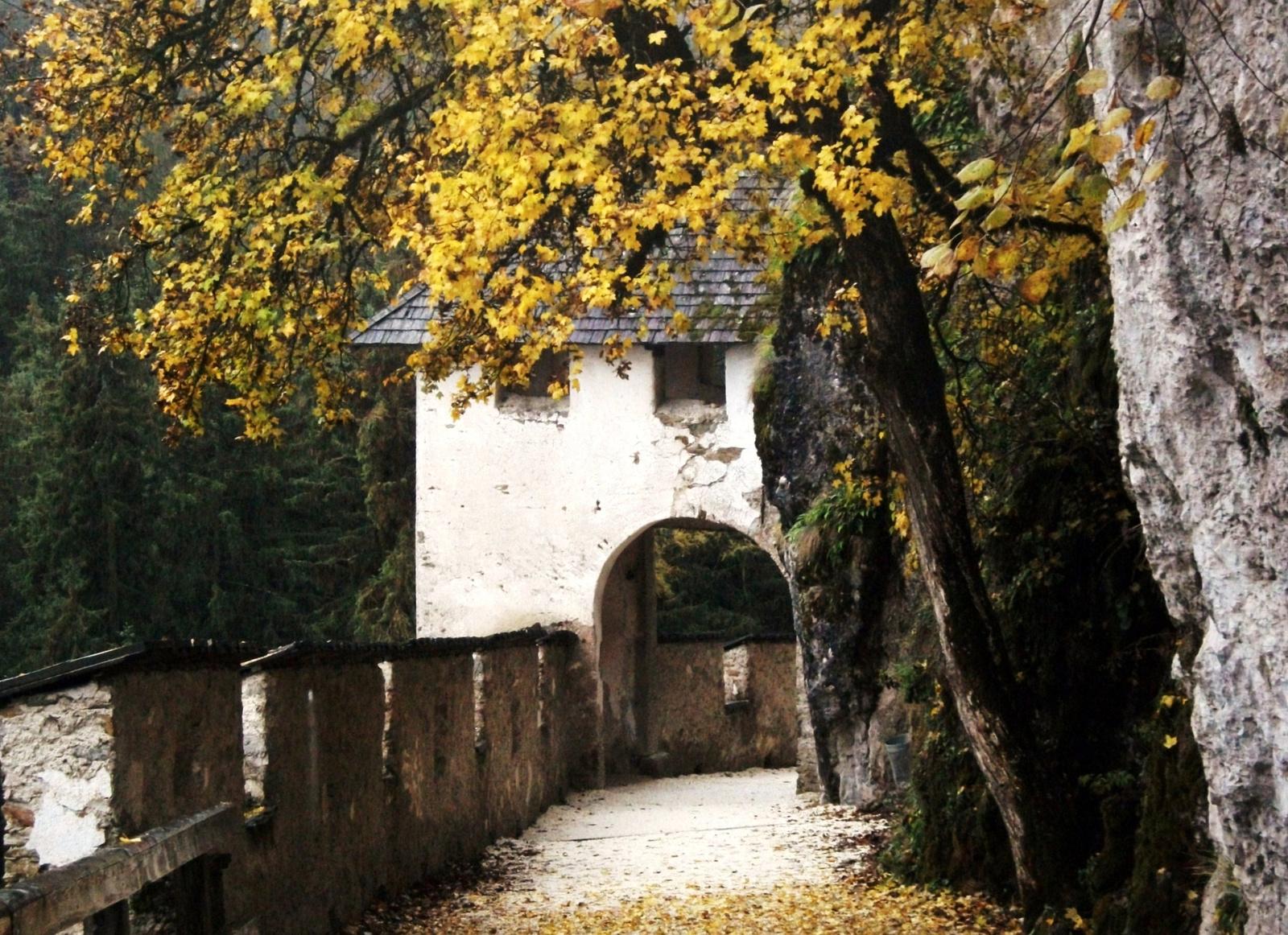 Sárguló levelek alatt
