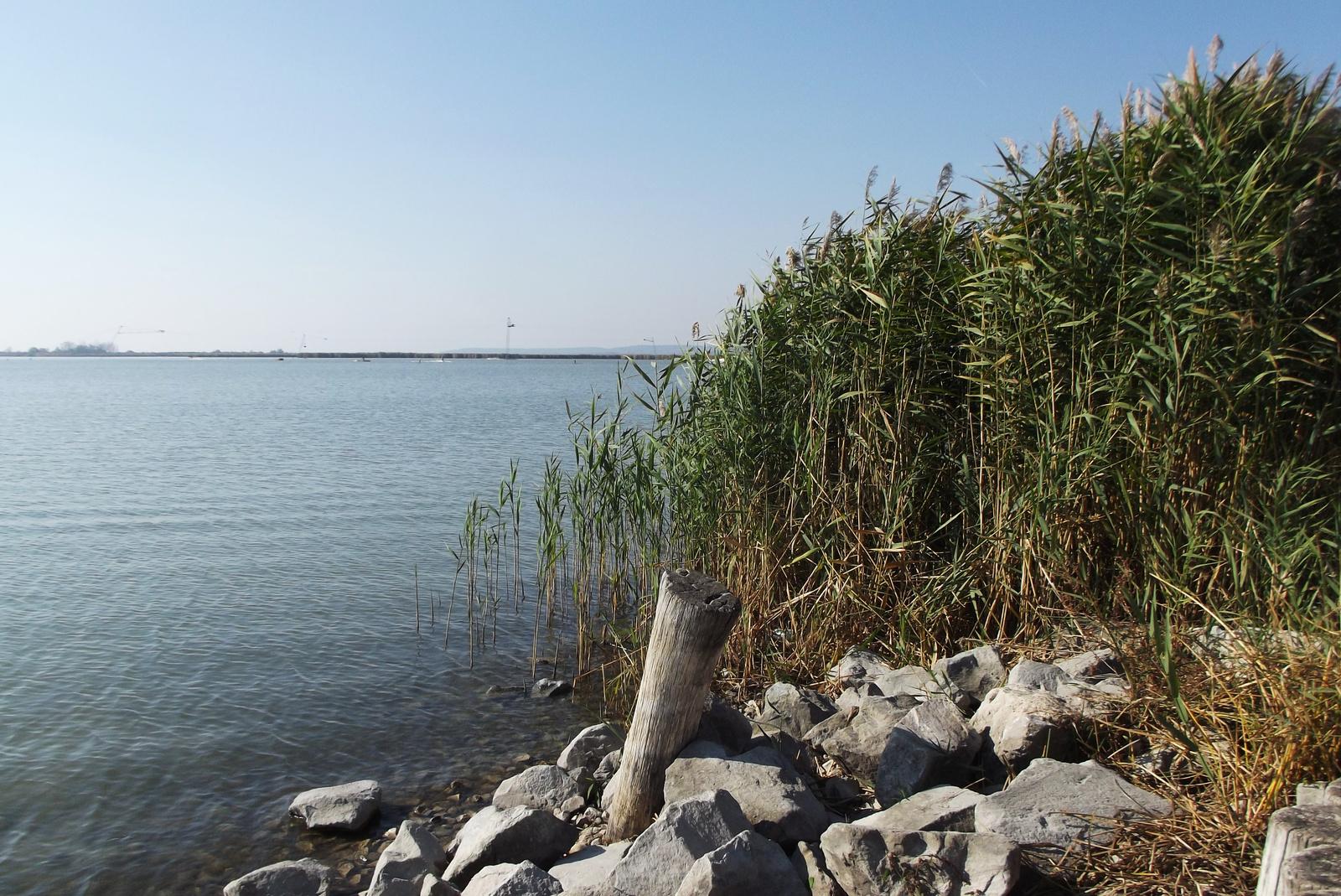 Velencei-tó ősszel
