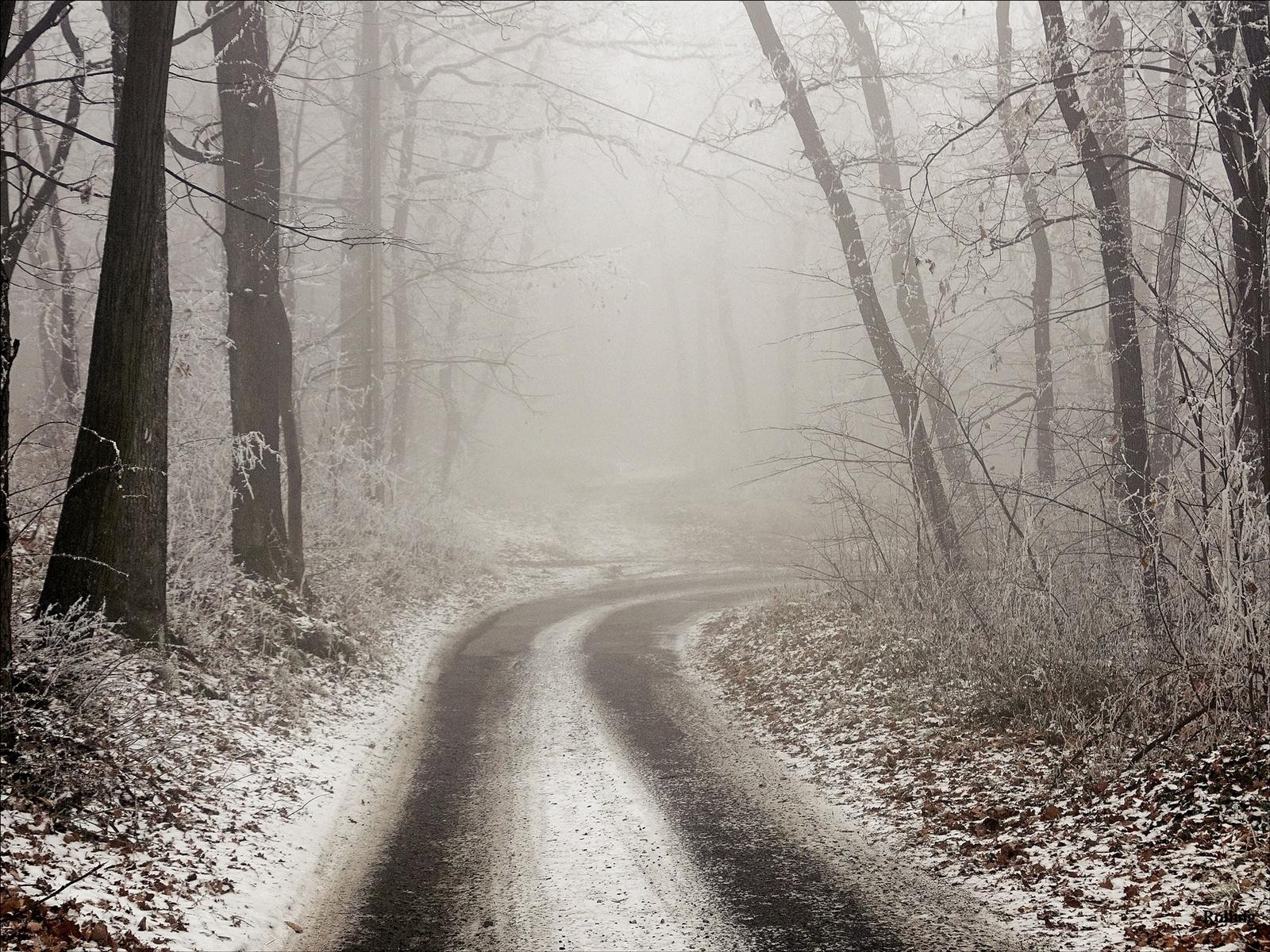 Sejtelmes út,,/Hideg-Völgyi út.