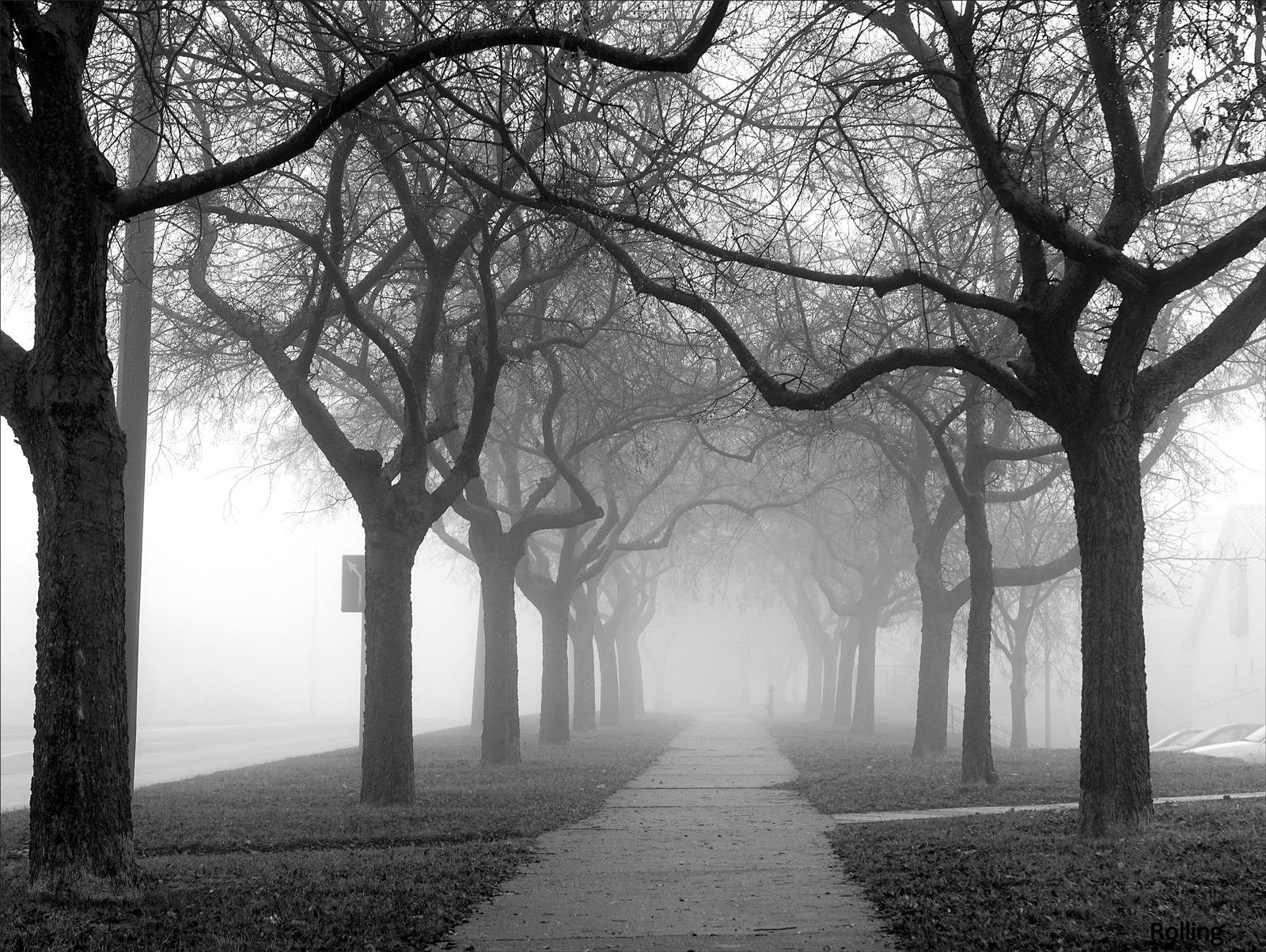 Ködös út.